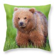 Cuddly Bear Cub Throw Pillow