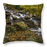 Cullasaja River In Autumn Throw Pillow