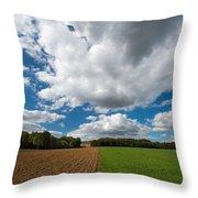 Cumulus Skies In France Throw Pillow