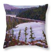 Cunnington Marsh Throw Pillow