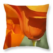 Cup Of Gold Throw Pillow