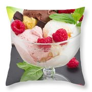 Cup Of Icecream Throw Pillow