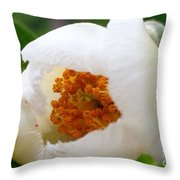 Cupping Beauty  Throw Pillow