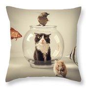 Curiosity Killed The Cat Throw Pillow