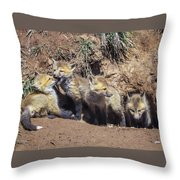 Curiosity Wins Throw Pillow