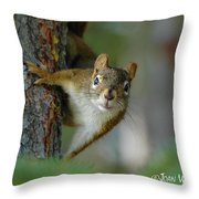 Curious Alaskan Red Squirrel Throw Pillow