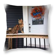Curious Bengal Cat Throw Pillow