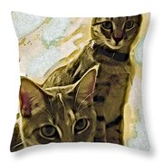 Curious Cats Throw Pillow by David G Paul