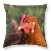 Curious Chicken Throw Pillow