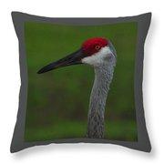 Curious Crane 2 Throw Pillow