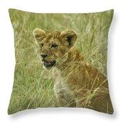 Curious Cub Throw Pillow