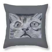 Curious Eyes Throw Pillow