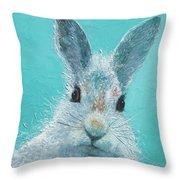 Curious Grey Rabbit Throw Pillow