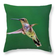 Curious Hummer Throw Pillow