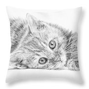 Curious Kitten Throw Pillow