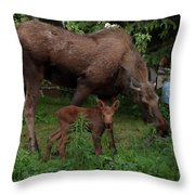 Curious Little One Throw Pillow