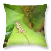 Curious Lizard I Throw Pillow
