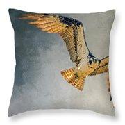 Curious Osprey Throw Pillow