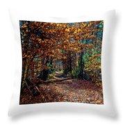 Curious Path In Autumn Throw Pillow