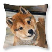 Curious Shiba Inu Throw Pillow