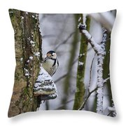 Curious White-backed Woodpecker Throw Pillow