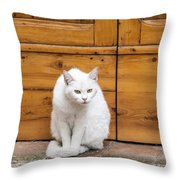 Curious White Cat  Throw Pillow