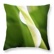 Curled Calla Throw Pillow