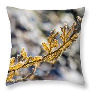 Curled Fern Frond Tip Throw Pillow