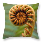 Curled Fern Throw Pillow