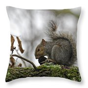 Curled Tail Throw Pillow