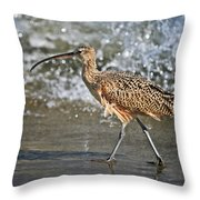 Curlew And Tides Throw Pillow