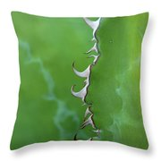 Curly Agave Throw Pillow