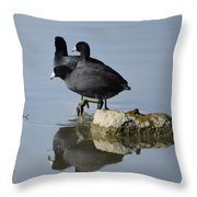 Curly, Moe, And Larry Throw Pillow