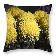 Curly Mums Throw Pillow