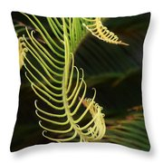 Curly Qs Throw Pillow