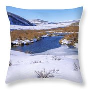 Currant Creek On Ice Throw Pillow