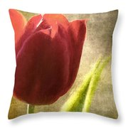 Currently Vintage Xvii Throw Pillow