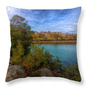 Curve At The End Throw Pillow