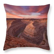 Curves Ahead Throw Pillow