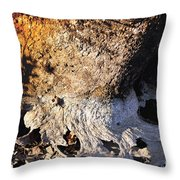 Curves And Colors In Nature Throw Pillow