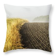 Curves And Fog Throw Pillow