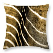 Curves And Folds Throw Pillow