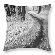 Curving Path Through Woods Throw Pillow