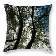 Curvy Trees Throw Pillow