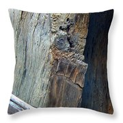 Cut From The Past Throw Pillow