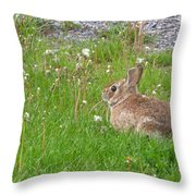 Cute And Fluffy Throw Pillow