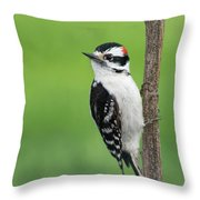 Cute And Ornery Throw Pillow