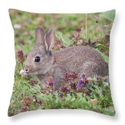 Cute Baby Bunny Throw Pillow