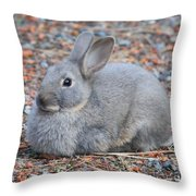 Cute Campground Rabbit Throw Pillow