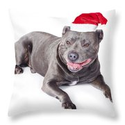 Cute Dog In Santa Hat Throw Pillow